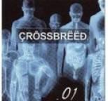 Crossbreed - .01