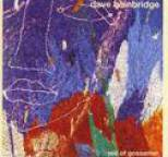 Dave Bainbridge - Veil of Gossamer