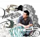 David Choi - Forever and Ever