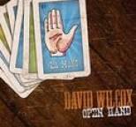 David Wilcox - Open Hand
