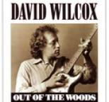 David Wilcox - Out Of The Woods