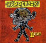 Hammerbox - Numb