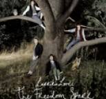 Larrikin Love - The Freedom Spark