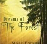 Marc Enfroy - Dreams of the Forest