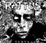 Rattus - Turta
