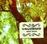 Valvomo - Mikä kesä? / Single