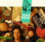 Zach Gill - Stuff